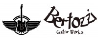 Bertozzi Guitar Works